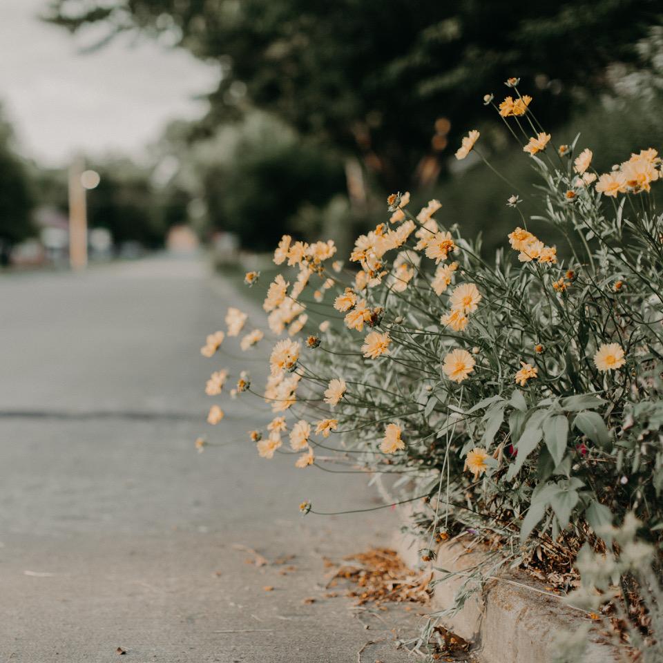 Loved in our Darkest Hour // by Krissi Trowbridge